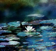 Water Lily Pond Impression by Darlene Lankford Honeycutt
