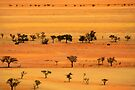 View from Kuiseb Pass , Namib Naukluft Park,  Namibia. by PhotosEcosse