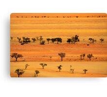 View from Kuiseb Pass , Namib Naukluft Park,  Namibia. Canvas Print