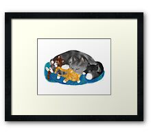 Three Kittens on Momma have a Cat Nap Framed Print