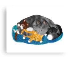 Three Kittens on Momma have a Cat Nap Canvas Print