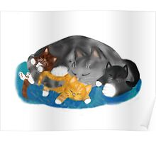 Three Kittens on Momma have a Cat Nap Poster