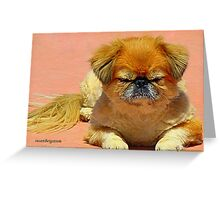 The Zen Of Naps Greeting Card