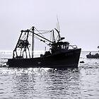 Morning Fishing - Lyme Regis by Susie Peek