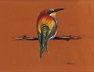 Wild - Original pastel/colored pencil drawing of a colorful wild bird by Rebecca Rees