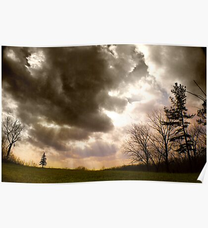 Big Sky, Little Tree Poster
