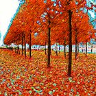 Orange Forest by Gal Lo Leggio