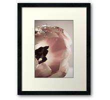 Softness Framed Print