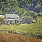 Little house in the Victorian Alps by George Petrovsky