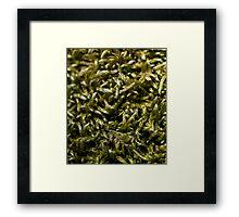 knitted moss Framed Print