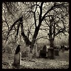 Silent by gothicolors