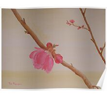 Lunar New Year Flowers Poster