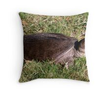 Snapping turtle on land Throw Pillow