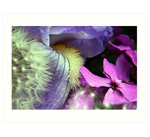 Macro Flower Combination Art Print