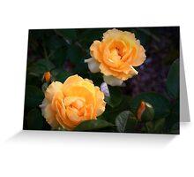 Yellow garden roses Greeting Card