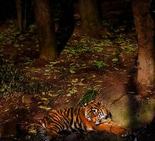 Sleeping Beauty by Natalie Manuel
