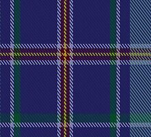 00464 Blue Ridge Highlands Heritage District Tartan  by Detnecs2013