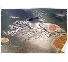 Salt Lake Tree Outback NT Poster