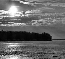 Monochromatic Winter Sunset  by Robert Meyers-Lussier