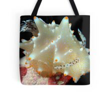 Whats Your Point? Tote Bag