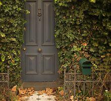 Palmerston St by daveoh
