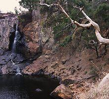 Nigretta Falls by daveoh