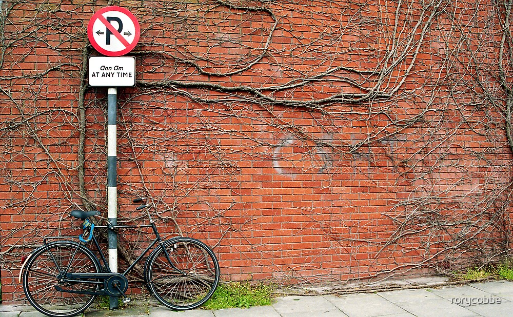 Cycling In THe Modern Age II by rorycobbe