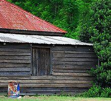 Home Sweet Home by Bev Woodman