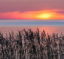 Cana Island Sunrise by Kenneth Keifer