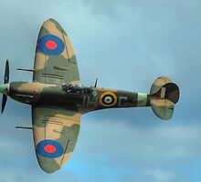 Spitfire Classic View by SimplyScene