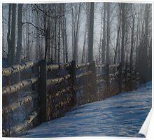 Birch Fence Poster