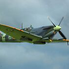 Spitfire Straight and Level by SimplyScene
