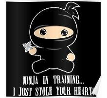 Lil Ninja in Training Poster