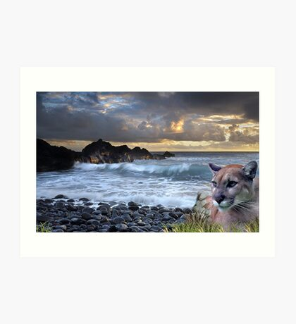 1199-Coastal California Cougar Sunset Art Print