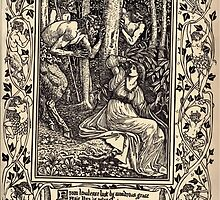 Spenser's Faerie queene A poem in six books with the fragment Mutabilitie Ed by Thomas J Wise, pictured by Walter Crane 1895 V1 215 - From Lawless Lust by Wondrous Grace by wetdryvac