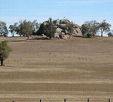 Morgan's Lookout near Walbundrie, NSW, Australia. by David Hunt