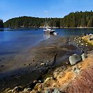 ebb tide retreat by VickiOBrien