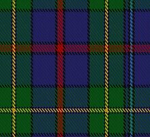 00436 The House of Bailey Tartan  by Detnecs2013