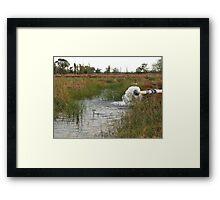 Pumped Farm Irrigation Framed Print