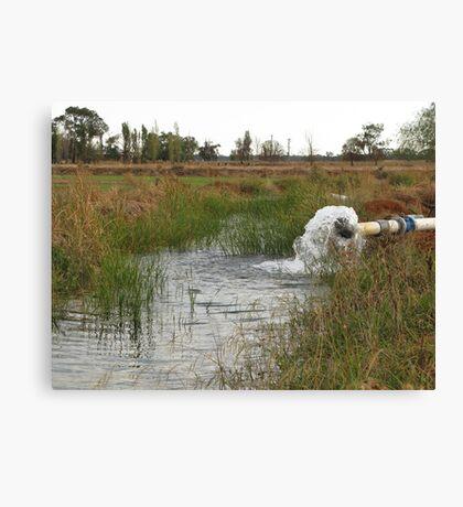 Pumped Farm Irrigation Canvas Print