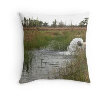 Pumped Farm Irrigation Throw Pillow
