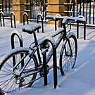 Last Snow of the Season by martinilogic