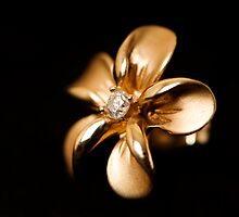 Golden Hibiscus by Jamoor