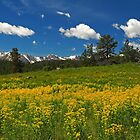 Rocky Mountains NP by algill