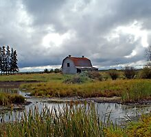 Canuck Barns & Old House by paolo1955