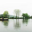 Lake side view by ybandey