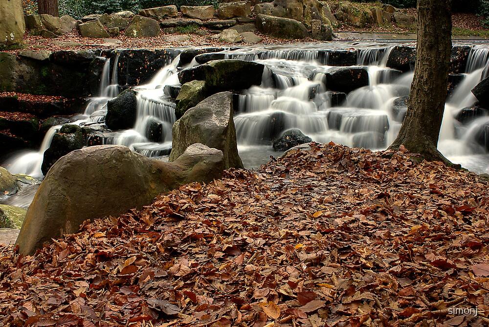 Virginia Waters Cascades V by simonj