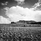 Across the desert's edge by Brent Olson