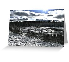 Landscape Snow Greeting Card