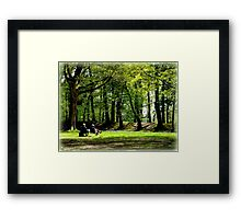 Sitting Amongst Bluebells Framed Print